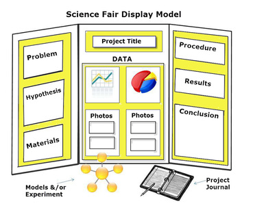 REMINDER OF SCIENCE FAIR DISPLAY BOARD LAYOUtcontent - Layout of a science fair board